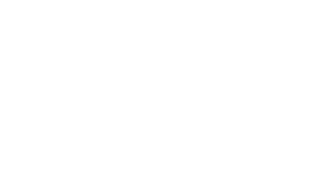 Pallas67 logo